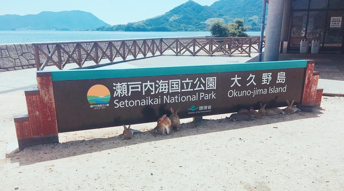 大久野島の港にある看板と、その日陰で休むうさぎ